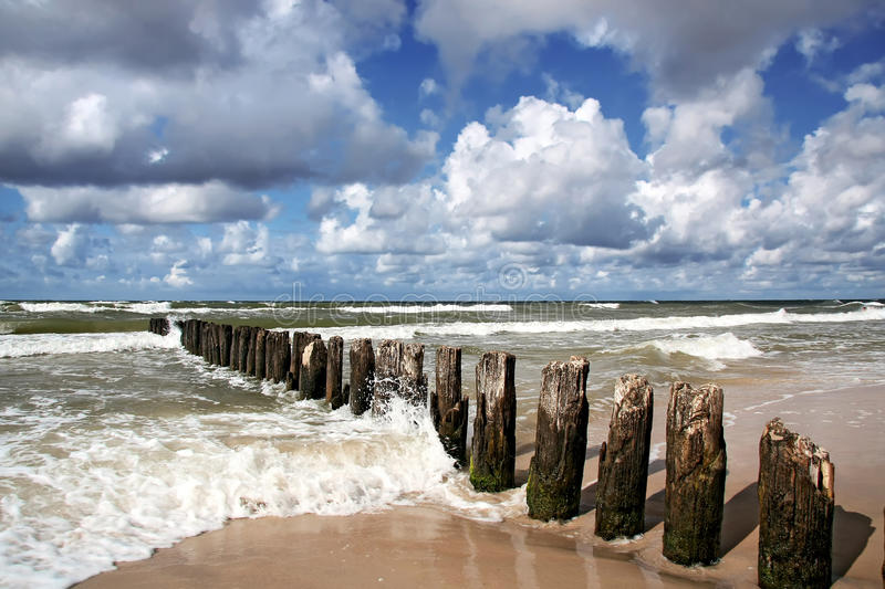 Windy day at seaside. stock images