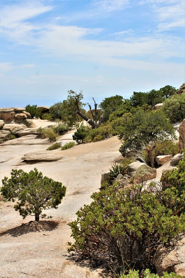 Windy Point Vista, Berg Lemmon, Santa Catalina Mountains, Lincoln National Forest, Tucson, Arizona, Vereinigte Staaten stockbild