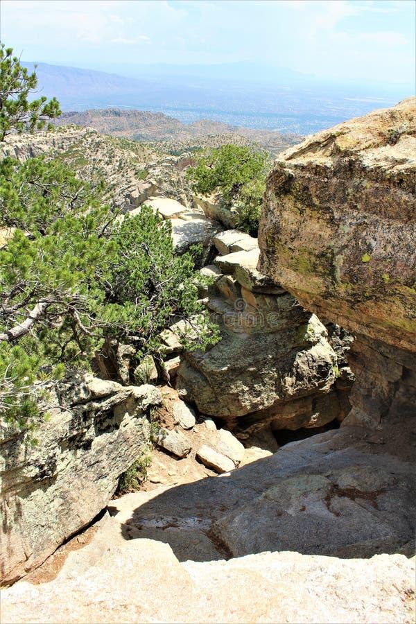 Windy Point Vista, Berg Lemmon, Santa Catalina Mountains, Lincoln National Forest, Tucson, Arizona, Vereinigte Staaten stockbilder