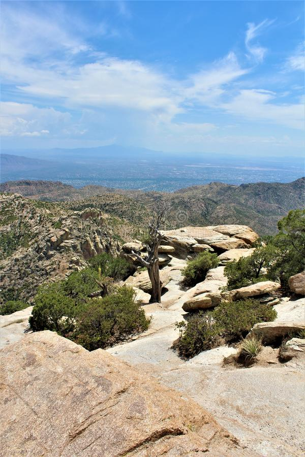 Windy Point Vista, montagem Lemmon, Santa Catalina Mountains, Lincoln National Forest, Tucson, o Arizona, Estados Unidos foto de stock