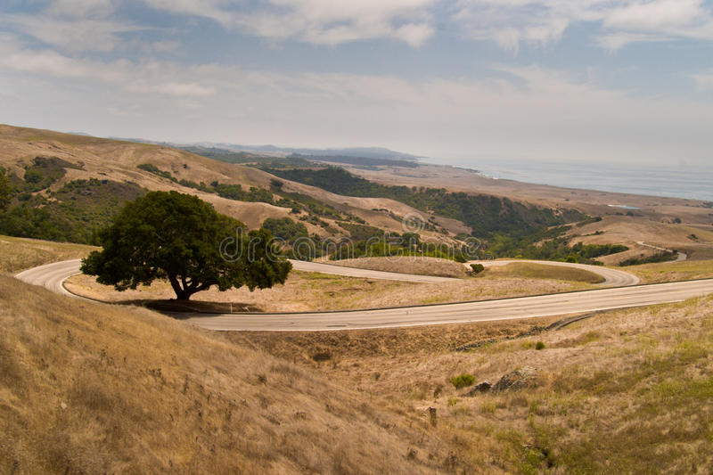 Download Windy road with trees. stock photo. Image of tree, brown - 11181240