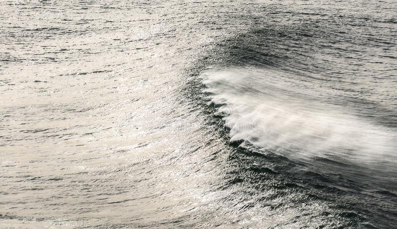 Windy seascape with wave royalty free stock photo