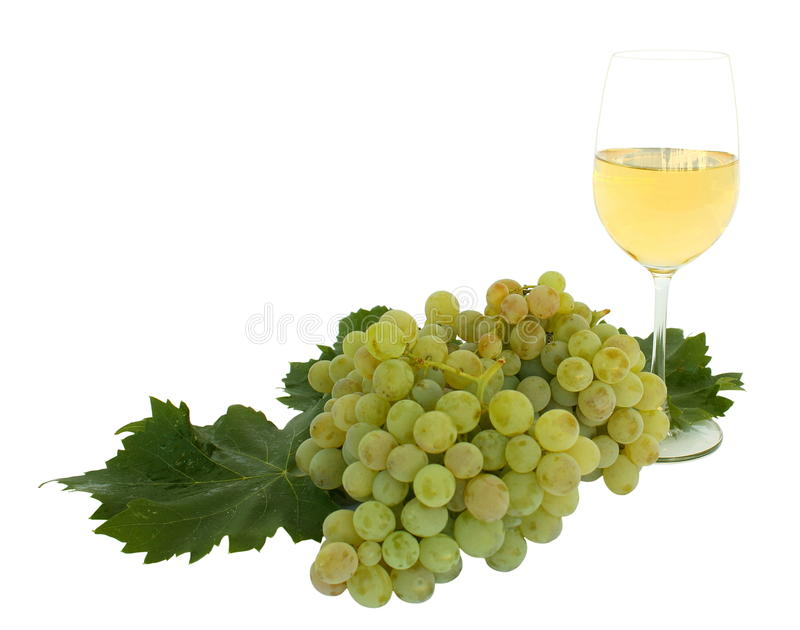 Download Wine stock image. Image of leafs, drinks, leaf, health - 26817799
