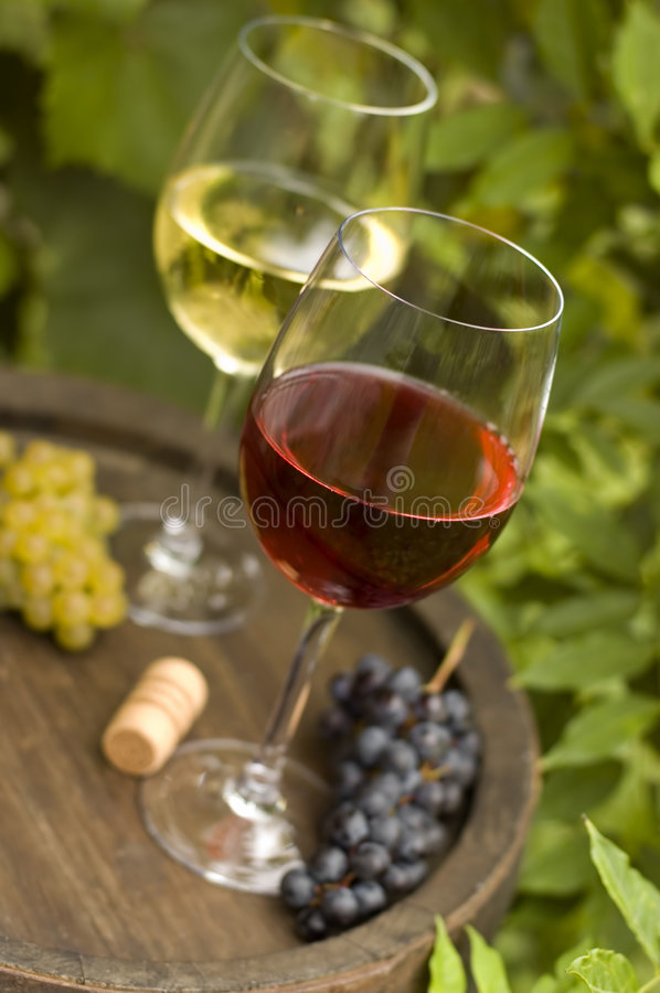 Download Wine Royalty Free Stock Images - Image: 3054839