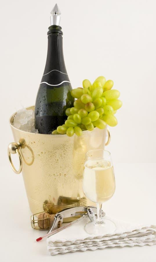 Free Wine And Around It Stock Photography - 4868892
