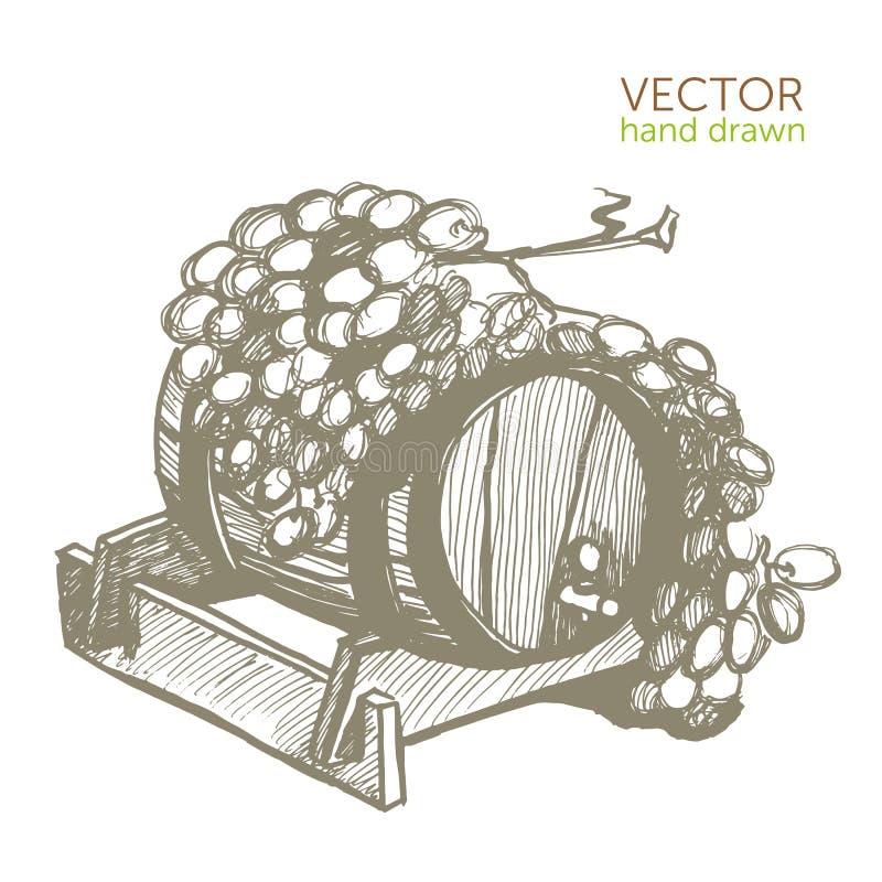 Wine barrel with vine, vintage pattern Beaujolais Nouveau. Vector vector illustration