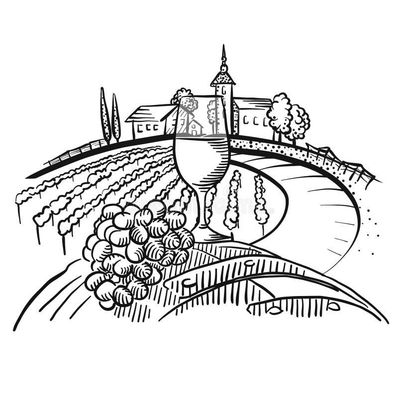Wine on barrel and vineyard landscape. Hand-drawn vector sketch vector illustration