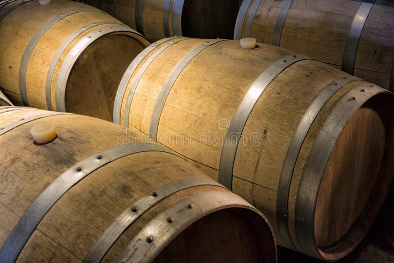 Wine barrels in the cellar stock photo