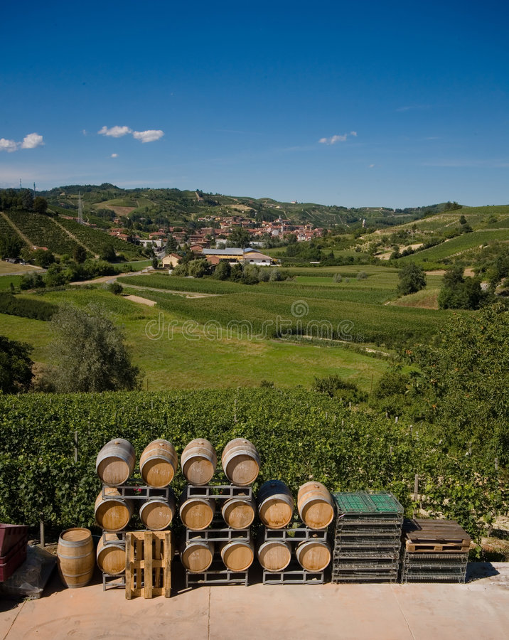 Free Wine Barrels In Italy Stock Images - 3076654