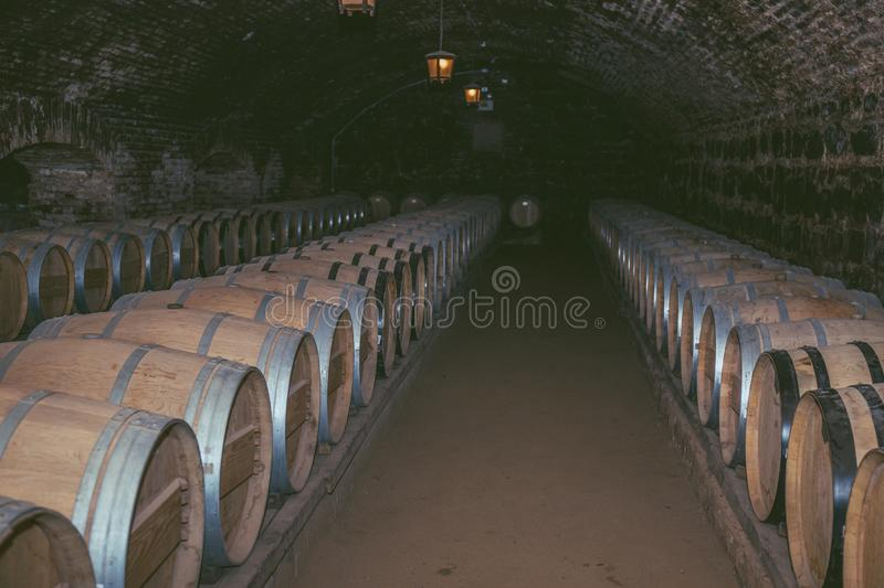 Wine barrels in a old cellar at winery. Wooden barrels of wine in vineyard. stock images
