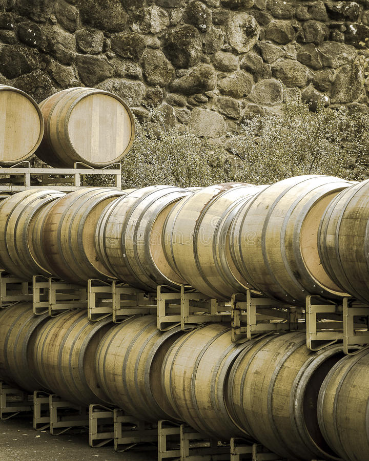 Wine barrels in sepia stock images