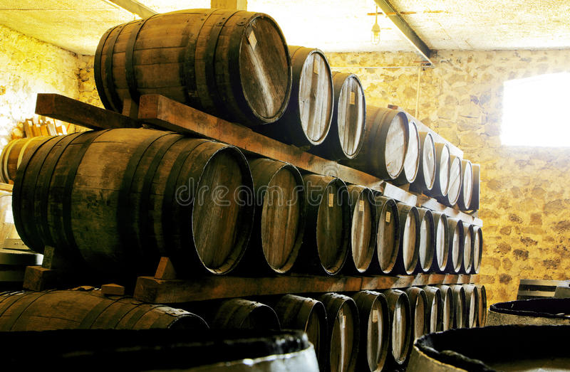 Wine barrels. Stacked in the old cellar of the winery royalty free illustration