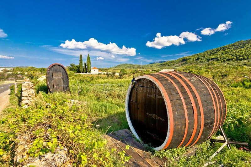 Wine barrels on Stari Grad plain. UNESCO world heritage site in Hvar island, Dalmatia, Croatia stock images