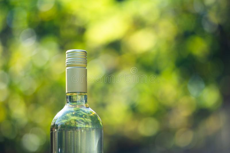 Wine bottle with blur background in vineyard, Hungary royalty free stock photography