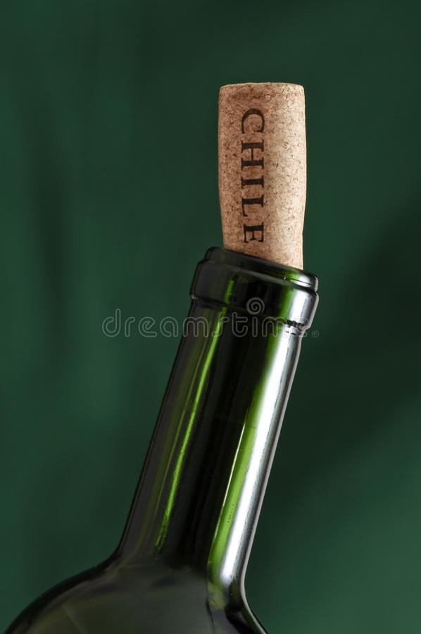 Wine Bottle From Chile Stock Photo