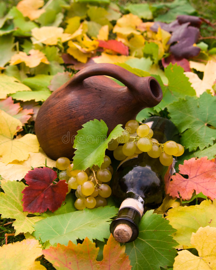 Wine bottle, crock and grape. Wine bottle with cork, crock and grapevine royalty free stock photo