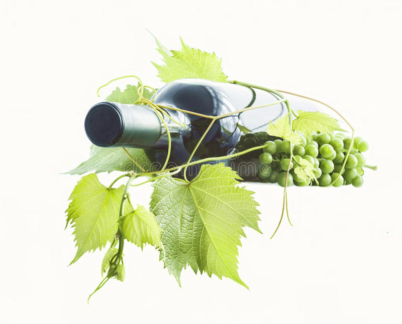 Download Wine Bottle And Grapes Royalty Free Stock Photos - Image: 29241378
