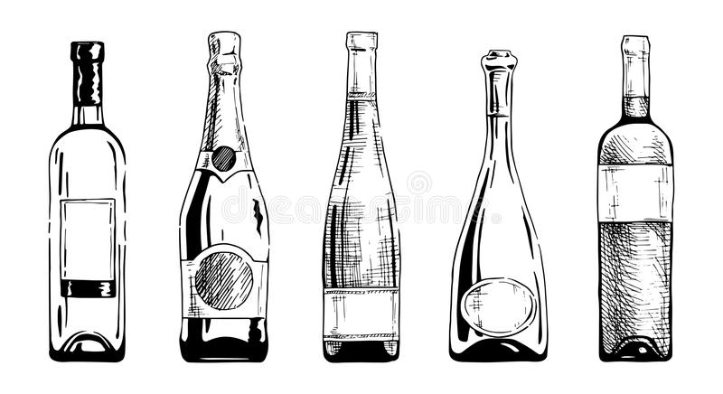 Wine bottle. Vector set of wine and champagne bottles in ink hand drawn style. on white