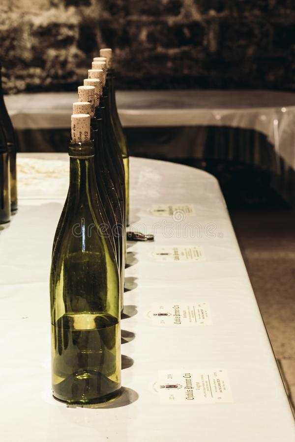 Wine bottles in the cellar royalty free stock photography
