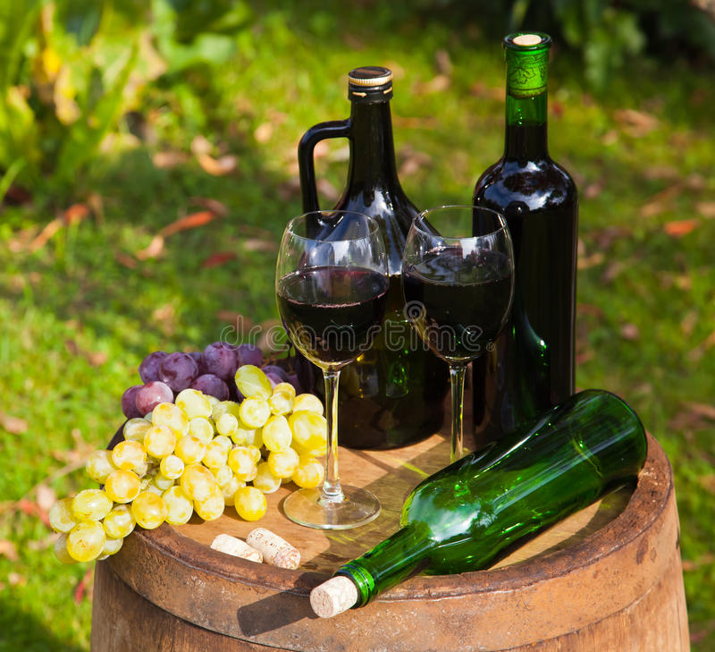 Wine Bottles and Grapes royalty free stock image