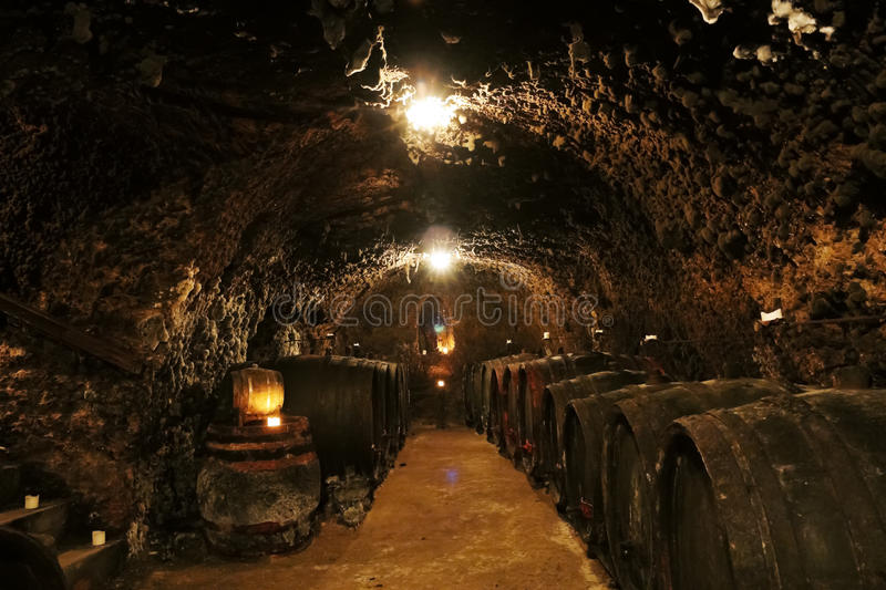 The wine cave. Old wine caves with wines barrels in Mala Trna village, Tokaj valley in Slovakia royalty free stock photos