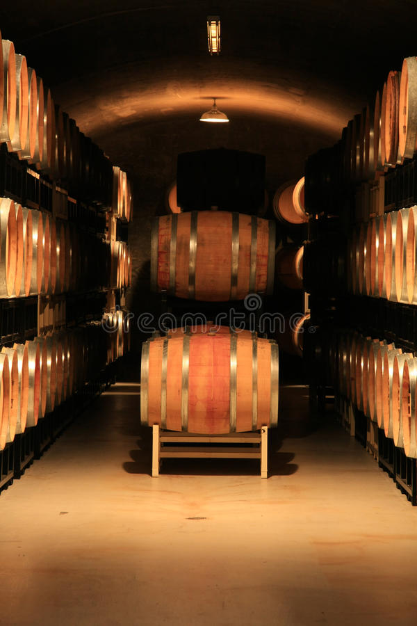 Wine cellar. Wine barrels in a vineyard cellar. Also available in horizontal stock image