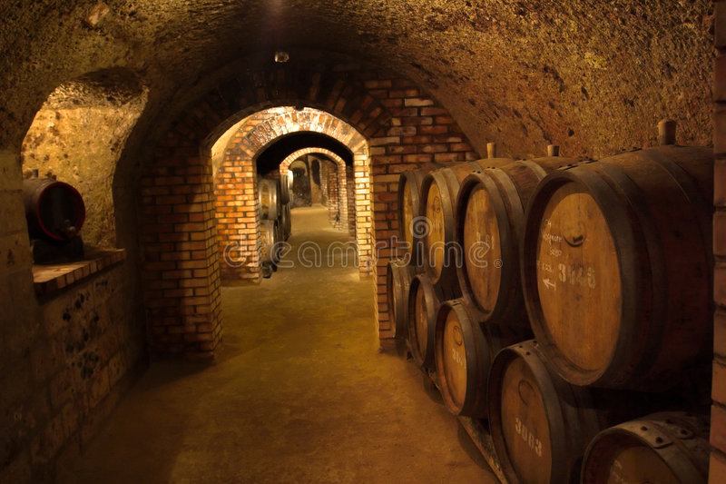 Download Wine-cellar stock photo. Image of bevealcoholic, ferment - 1093958