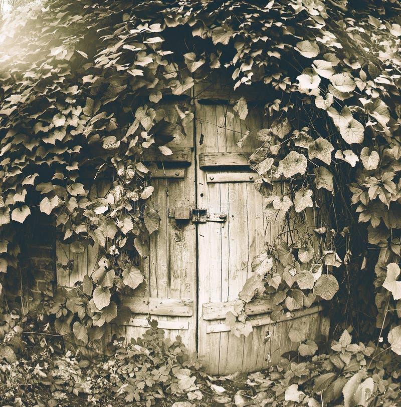 Wine cellar. Or house of hobbit stock photo