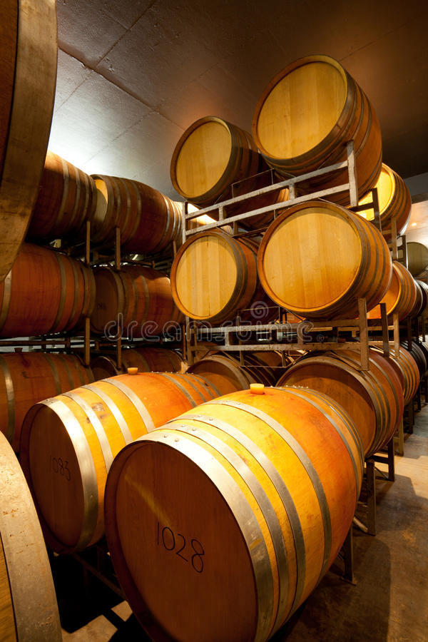 Download Wine Cellar Royalty Free Stock Images - Image: 22857189
