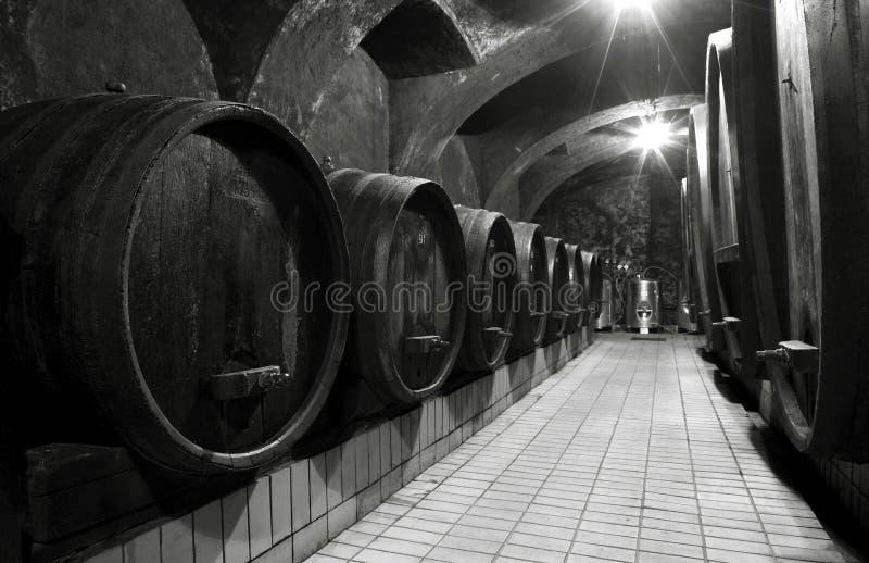 Download Wine cellar stock image. Image of barrels, vintage, vintner - 25119895