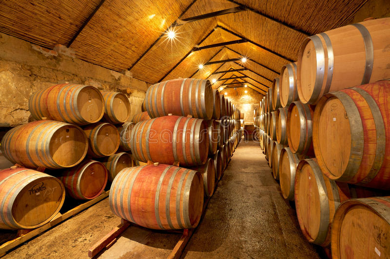 Download Wine Cellar editorial stock photo. Image of editorial - 37954238