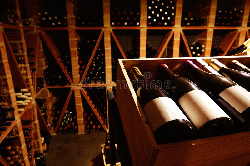 Wine Cellar from Mediterranean with bottles royalty free stock photo