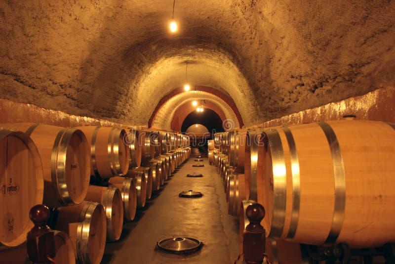 Wine Cellar in Spain royalty free stock image