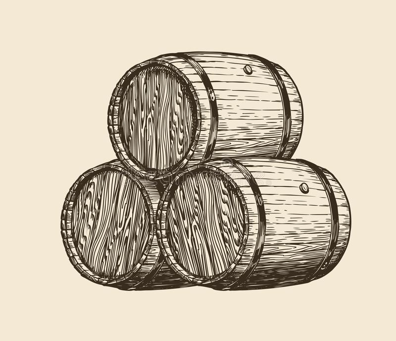 Wine cellar, winery. Wooden barrels with wine, sketch. Vintage vector illustration stock illustration
