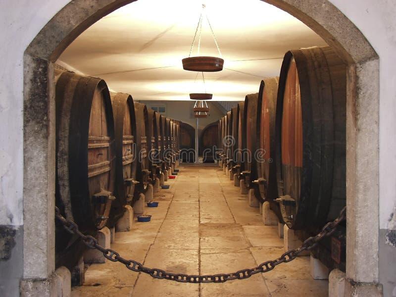 Wine Celler 2 stock photo