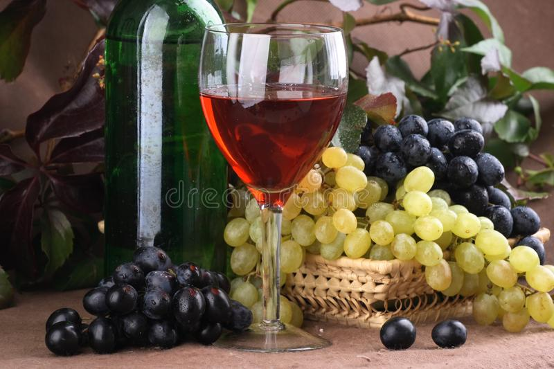 Wine composition Red wine stock image