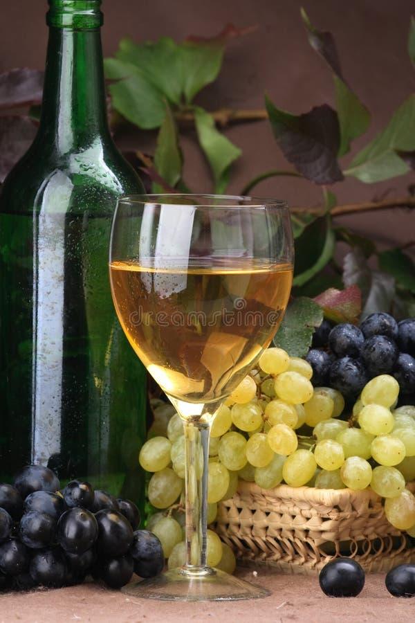 Wine composition White wine stock photos