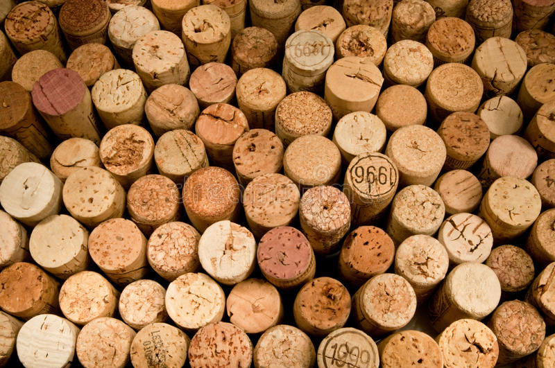 Download Wine cork stock photo. Image of flavor, extraction, expensive - 12761764