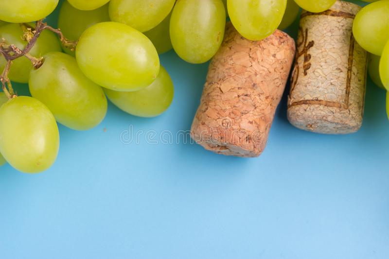 Wine cork and grape. On blue background stock image