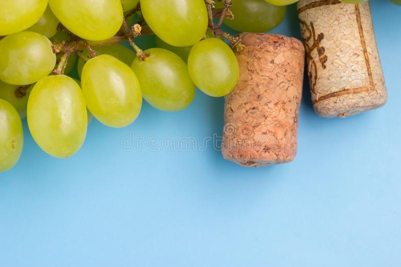 Wine cork and grape. On blue background stock photos
