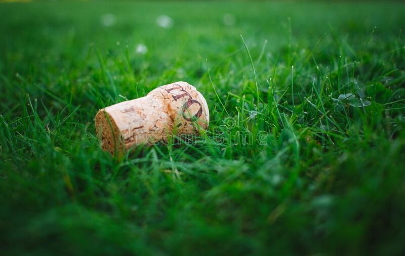 Wine cork on green grass royalty free stock photography