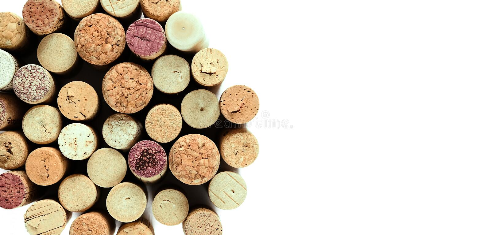 Wine corks background isolated on white with the place for text. Wine corks isolated on white background with the text area stock images
