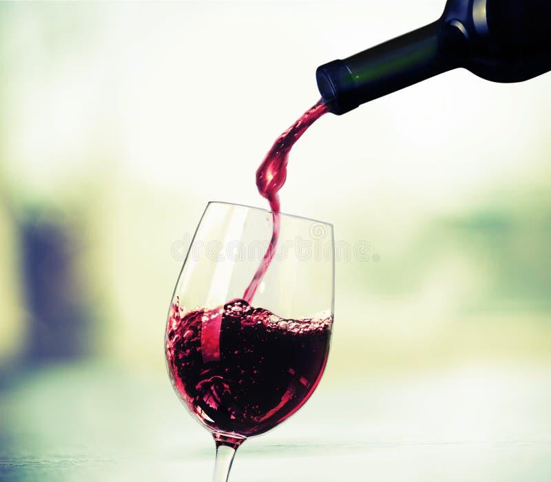 wine för bägarehandavsmakning arkivbilder