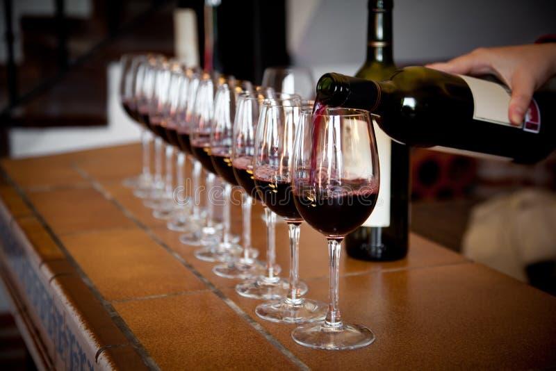 wine för exponeringsglasradavsmakning royaltyfri foto