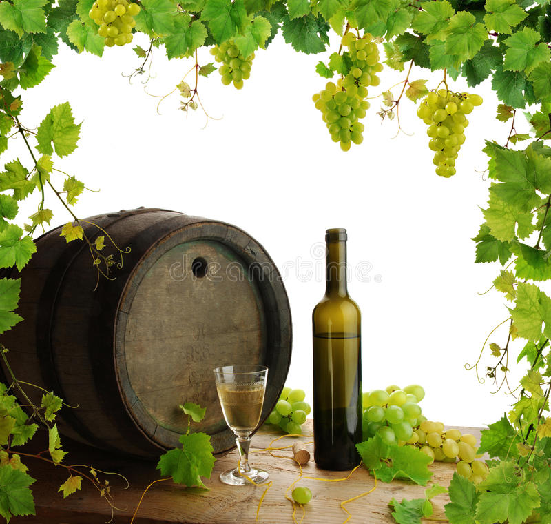 wine för vine för kantlivstid fortfarande royaltyfri foto