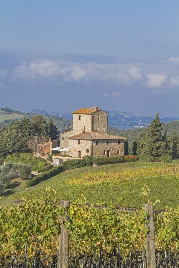 Free Wine Farm In Chianti Stock Photos - 35457403