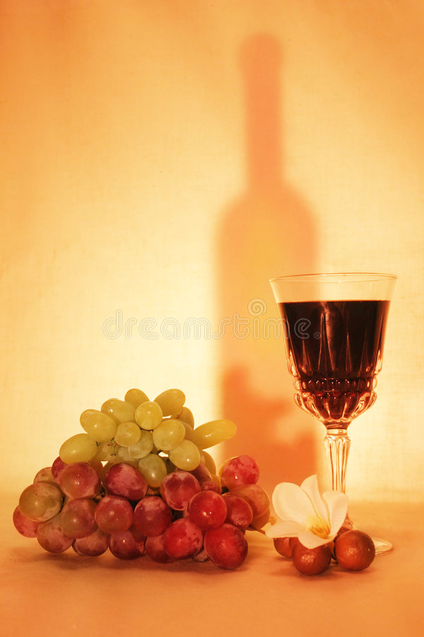 Wine, fruits and silhouette royalty free stock photography