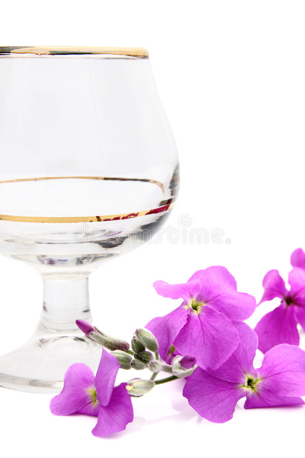 Download A Wine Glass And A Single Pink Flower. Royalty Free Stock Image - Image: 24352786