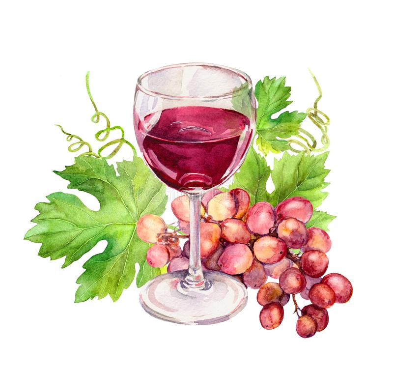 Wine glass with vine leaves, grape berries. Watercolor stock illustration