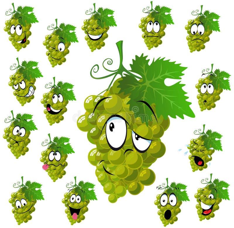 Wine grape vector illustration